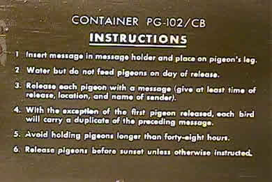 Message enclosed in pigeon carrier