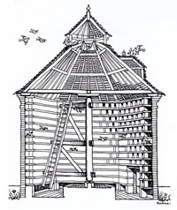 Cross Section Of Classic Dovecote