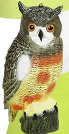 Buy Replica Plastic Owl Bird Scarers and Fake Owl Decoys