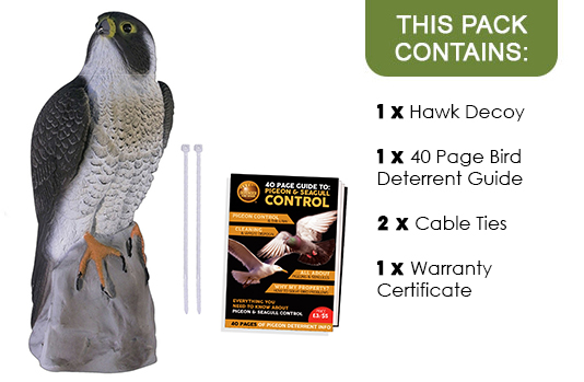 Buy Replica Falcon And Bird Of Prey Decoys Fake Plastic Hawk Bird