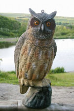 Star Rating For Fake Plastic Owl Bird Deterrent Decoy